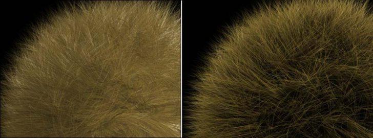 hair-fur-4